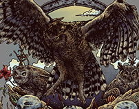 Owls and Skulls