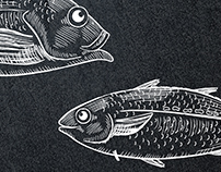Fish illustrations // NORDSEE personnel campaign