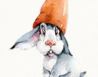 """""""Rabbit_002"""""""