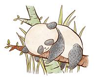 Sleepy Panda drawing