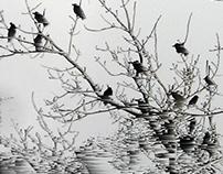 Frozen birds