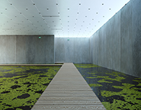 Bregenz Museum Animation  - Peter Zumthor
