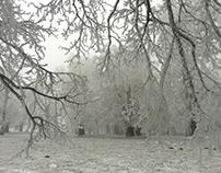 The Frozen Kingdom