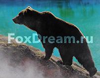 Presentation. Kamchatka tours . Free ai download.