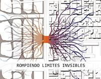 CI_Ciudad Informal_Proyecto_Entrega final Grupal_202010