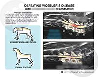Wobbler Disease - Cervical spondylomyelopathy (CSM)