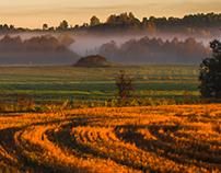 Fog. Latvia