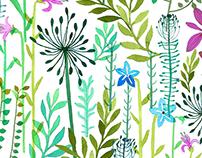 Meadow Aquarell Prints