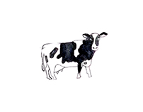 Dairy farming for Sferes / молокозавод для Сфер