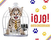 MINTRABAJO / Gato Encerrado