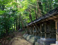 Dazaifu - 2015/2016