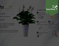 BePot Interflora