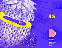 DRIMI | Festival Dream Pop