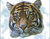 Tiger Commac