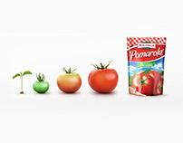 CGI Fruits