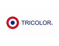 Stand Tricolor en Gran feria de capacitación Sodimac.