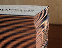 Architect Business Cards with side coloring