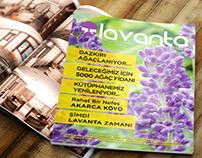 Lavanta (Lavender)- Town Magazine