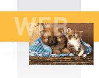 Rediseño Sitio Web