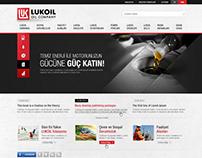 Lukoil / 2013