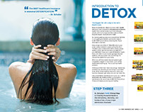 American Botanical Pharmacy Catalog: Detox intro
