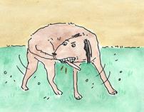 Illustration / Cartooning