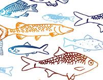 poster: Journée National de la Pêche