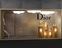 Dior Window Display