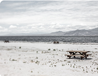 California - the Salton Sea