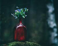 Wandering vase