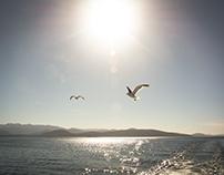 Puerto Blest & Lago Frías