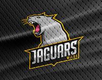 Jaguars Mascot - Concept