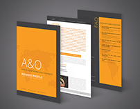 Business Consultant Profile Design