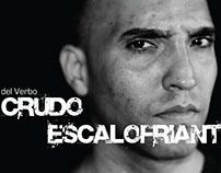 cover of del Verbo