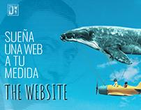 Paginas Web Creativas - Diseñoweb-barcelona.com