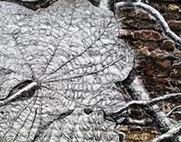 """Mural """" Vegetal Chaos"""""""