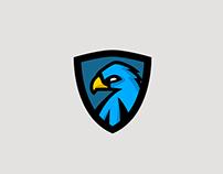 Hawk Concept Logo