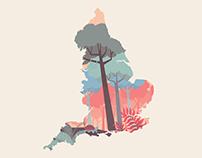 Rain Forest Preserve