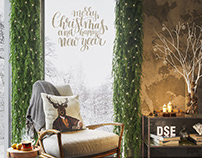 Merry Christmas and a Happy New Year from DSE team