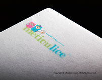 METICULICE- WEBSITE DESIGN