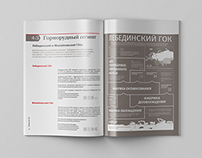 Metalloinvest / Annual report / consept
