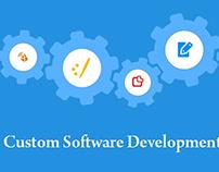 Custom Software Application Development