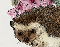 Watercolor Flowers & Inked Animals