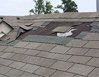 How Shingles Can Protect Your Roof