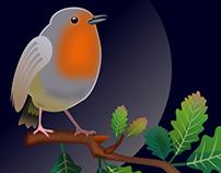 European robin vector