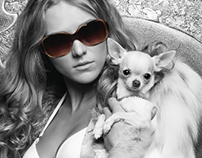 Iconic Sunglass Collection