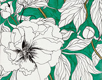 Green Peonies Illustration
