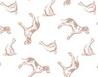 Bird Dog BBQ branding project