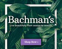 Bachman's Display Banner Ad