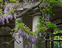 Van Vleck House and Gardens, Montclair, New Jersey